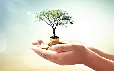 2 outstretched hands holding miniature tree in a pot and gold coins