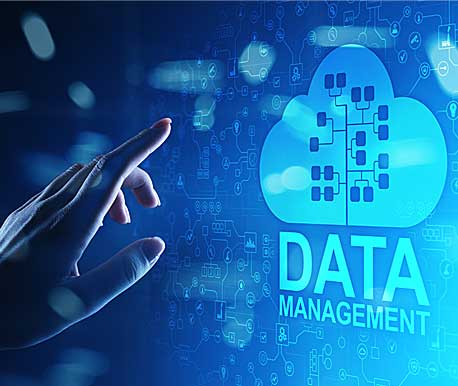 Database Design & Development